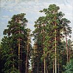 Sun in the woods 1895 106h71, Ivan Ivanovich Shishkin