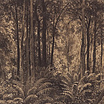 Ferns in the woods. 1877 28, 4h21, Ivan Ivanovich Shishkin