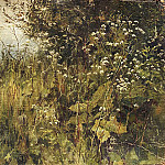 -Ground-grass. Etude, Ivan Ivanovich Shishkin
