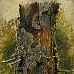 Cora on dry barrel 1889-1890 26, 1h17. 9, Ivan Ivanovich Shishkin