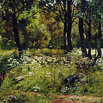 Forest Glade. Late 1880 - early 1890s, 34, 6h59, 6, Ivan Ivanovich Shishkin