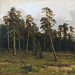 Ivan Ivanovich Shishkin - Rich log (Pine forest on the river Kama) 1877 90h148