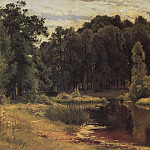 Ivan Ivanovich Shishkin - Pond in the old park. Study 1897 43, 3h67. 1