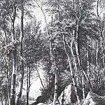 On the edge of a birch grove. Balaam. 1859-1860 44, 4h37, 5, Ivan Ivanovich Shishkin