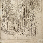 Aspen on the way to Kivach. 1889 48, 1h32. 4, Ivan Ivanovich Shishkin