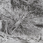 In the woods. Fallen Tree 1878 32. 3h23, 4, Ivan Ivanovich Shishkin