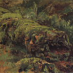 rotten wood. covered mhom1890 21. 7h33. 3, Ivan Ivanovich Shishkin
