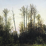 Forest in the spring of 1884 142h105, Ivan Ivanovich Shishkin