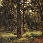 Ivan Ivanovich Shishkin - In the protected oak grove (Peter the Great in Systroretske) 1,886 127h198