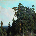 Forest from the mountain. 1895 106, 4h73, Ivan Ivanovich Shishkin