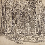 Birchwood. The second half of 1870 21, 5h34, 8, Ivan Ivanovich Shishkin