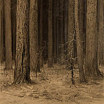 Ivan Ivanovich Shishkin - Web in the woods 1880, 44, 8h30, 5