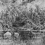 Beach brook 1885 paper, graphite. pencil 48h31. 5, Ivan Ivanovich Shishkin
