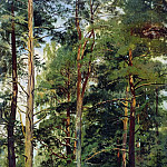 Ivan Ivanovich Shishkin - meadow with pine trees 59 23. 4