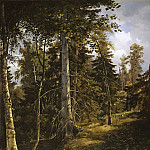 Forest thicket of 1867, 93 581, 5, Ivan Ivanovich Shishkin