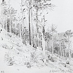 at the top of the Ai-Petri 1879 47h30, 4, Ivan Ivanovich Shishkin
