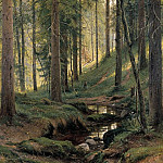 Ivan Ivanovich Shishkin - Stream in the Forest (on the hillside) 1880 204h138
