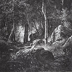 On the edge of a birch grove. Valaam Island. 1859-1860 44, 4h37, 5, Ivan Ivanovich Shishkin