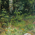 Ivan Ivanovich Shishkin - birch and rowan 1878 38h28. 5