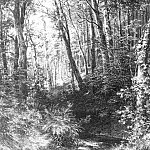 Stream in the Forest 1880, 67h52, 2, Ivan Ivanovich Shishkin