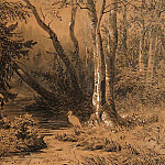 Backwoods 1870 37, 2h54 ink, pencil, pen, white and brush., Ivan Ivanovich Shishkin