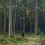 In the forest Countess Mordvinovoj. Peterhof 1891 81h108, Ivan Ivanovich Shishkin