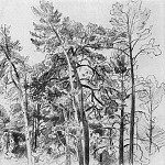 tops of the pines 1890 32. 7h41. 8, Ivan Ivanovich Shishkin