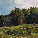 meadow at the edge of the forest. Siverskaya. 1887 33, 5h53, 5, Ivan Ivanovich Shishkin