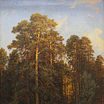 On the edge of a pine forest in 1882, Ivan Ivanovich Shishkin