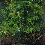 Wildflowers near the water. Etude 1889-1890 22. 4h14. 2, Ivan Ivanovich Shishkin