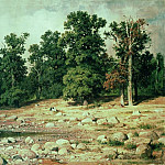 Coast Peter groves in Sestroretsk 1886 92h169, Ivan Ivanovich Shishkin