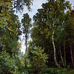 Ivan Ivanovich Shishkin - overgrown pond at the edge of the forest. Siverskaya. 1883 56h42