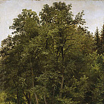 On the edge 1885 70. 8h53, Ivan Ivanovich Shishkin