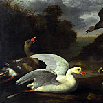 Part 4 National Gallery UK - Johannes Spruyt - Geese and Ducks
