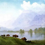 Bierstadt Albert Buffalo Country, Albert Bierstadt
