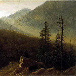 Albert Bierstadt - Bierstadt Albert Bears in the Wilderness
