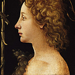 Metropolitan Museum: part 4 - Piero di Cosimo (Italian, Florence 1462–1522 Florence) - The Young Saint John the Baptist