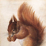 German artists - HOFFMANN Hans Squirrel