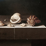 Part 5 Louvre - Adriaen Coorte -- Six shells on a stone slab
