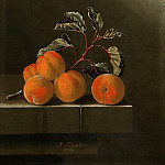 Adriaen Coorte - Still life with five apricots, Mauritshuis