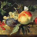 Jan van Huysum - Fruit Still Life, Mauritshuis