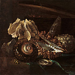 Willem Kalf - Still Life with Shells and Coral, Mauritshuis