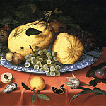 Balthasar van der Ast - Fruit Still Life with Shells and Tulip, Mauritshuis