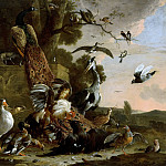 Mauritshuis - Melchior d' Hondecoeter - The Raven Robbed of the Feathers He Wore to Adorn Himself