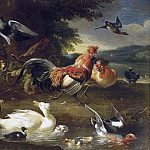 Melchior d' Hondecoeter - Chickens and Ducks, Mauritshuis