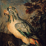 Part 4 - Roelant Savery (1576-1639) - Parrot, frog and cancer