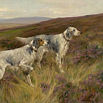 European art; part 1 - Arthur Wardle Two English setters on a grouse moor 100459 20