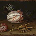 European art; part 1 - Balthasar van der Ast A Still Life with Flowers Shells and a Butterfly