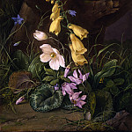 часть 2 -- European art Европейская живопись - FRANZ XAVIER PETTER Wildflowers at the base of a tree 29660 172