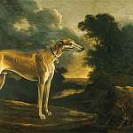 часть 4 -- European art Европейская живопись - Michelangelo Pace called Il Campidoglio Portrait of a Greyhound with Pup against a Landscape Background 18043 203